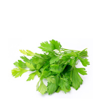 Italian Parsley (Organic)