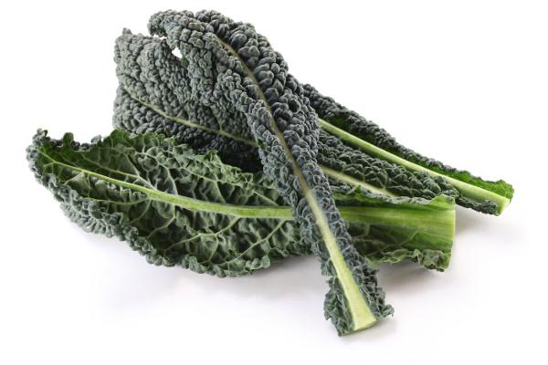 Tuscan Kale (Organic)
